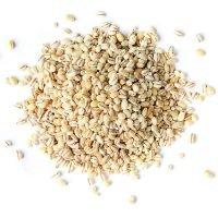 Barley Pearled Bulk
