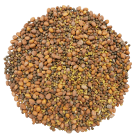 Spicy mix of sprouting seeds Without bag