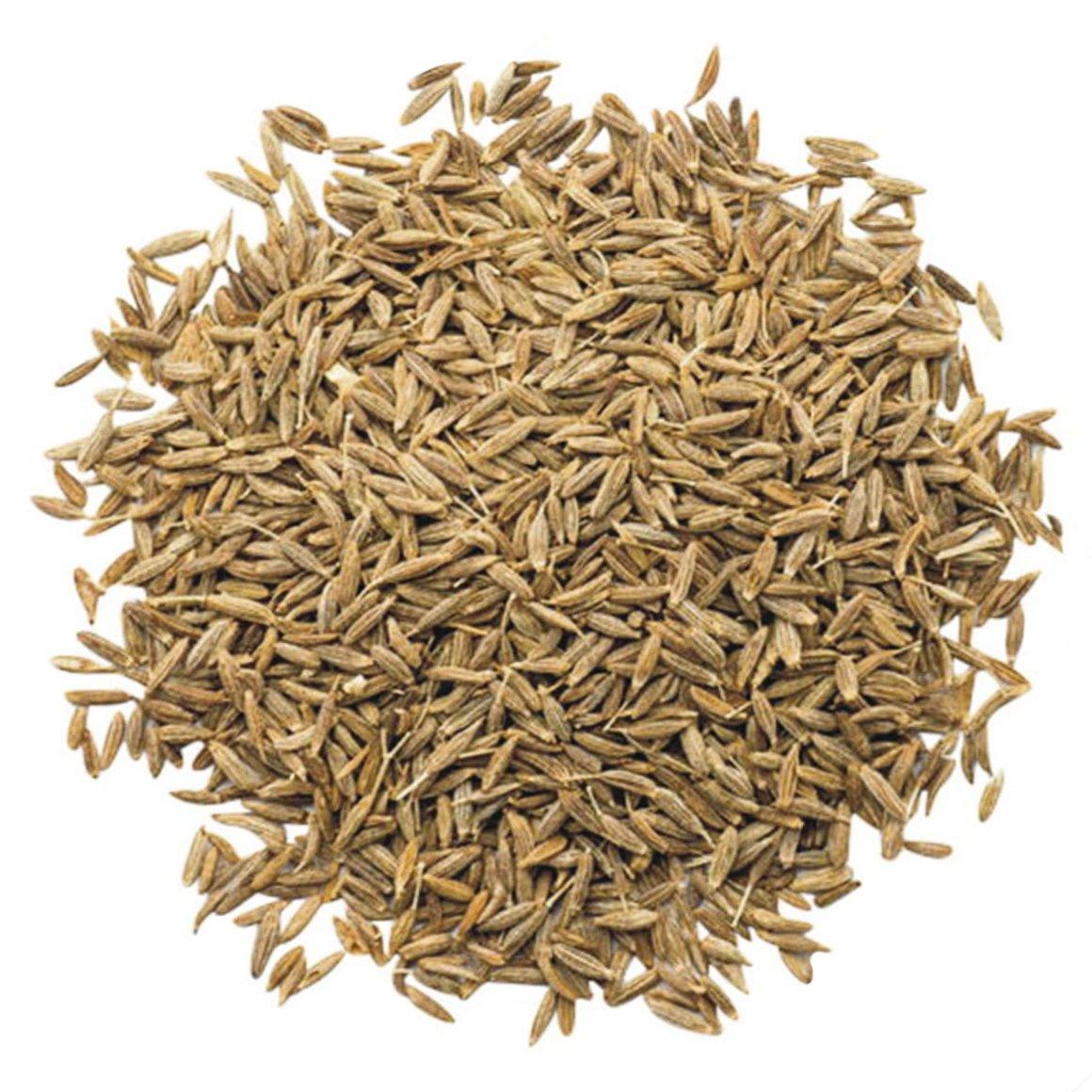 cumin-seeds-main-min