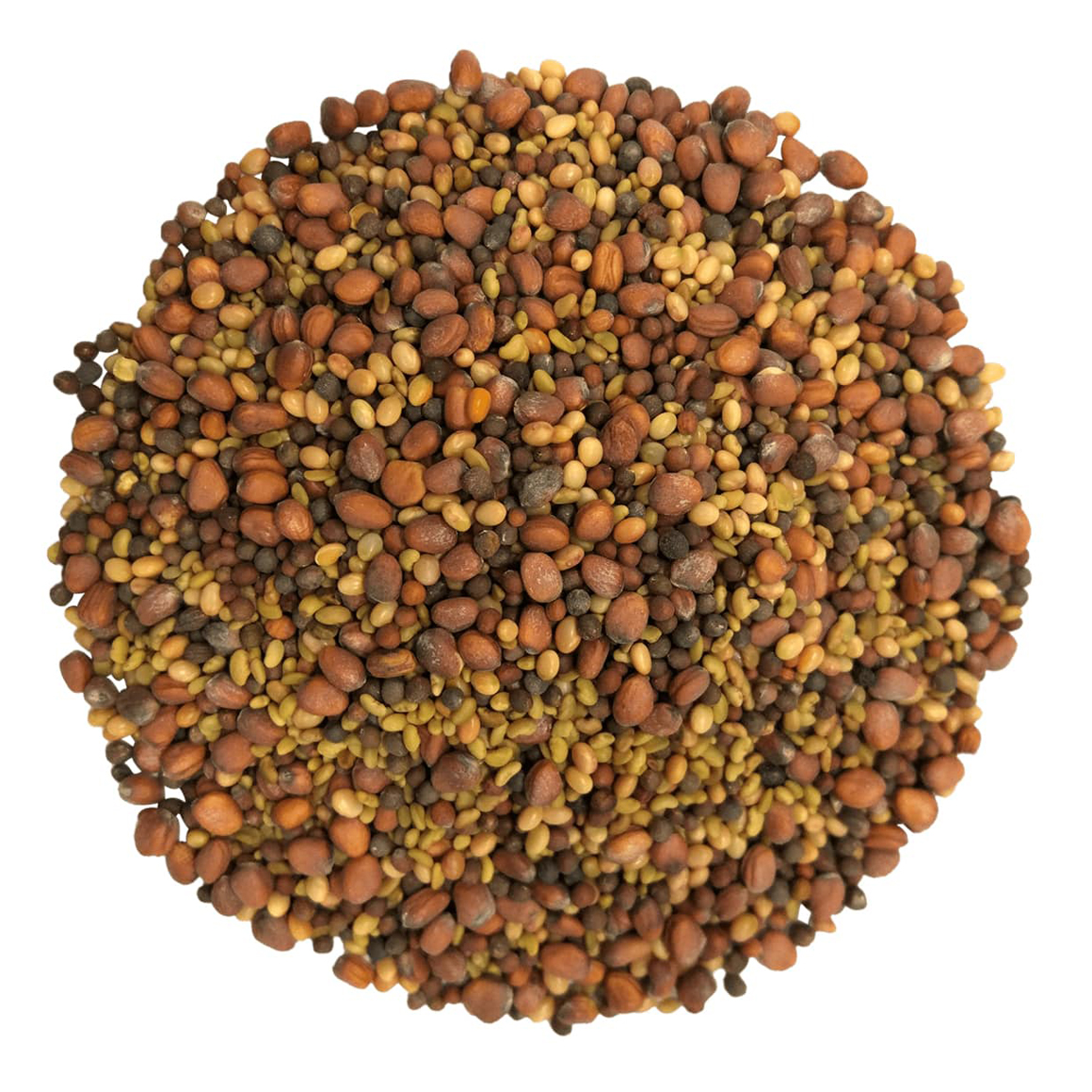 salad-mix-of-sprouting-seeds-main-min