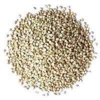 Organic-Buckwheat-Groats-Main