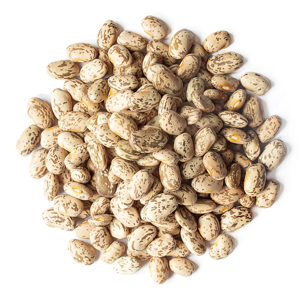 Organic-Pinto-Beans