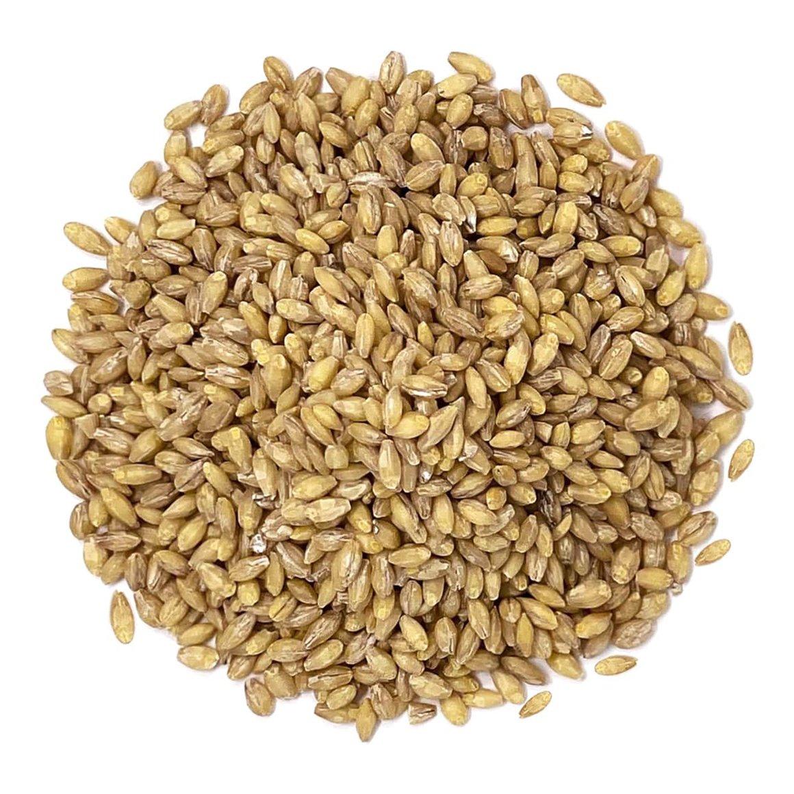 organic-hulled-barley-main