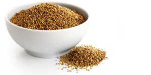 Organic Alfalfa Sprouting Seeds