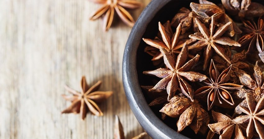 So, what is anise seed and how can it help you?