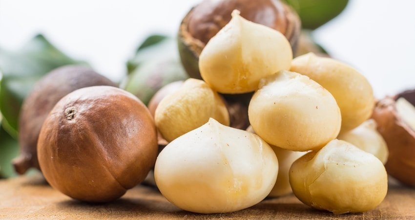Macadamia Nuts Nutrition Facts
