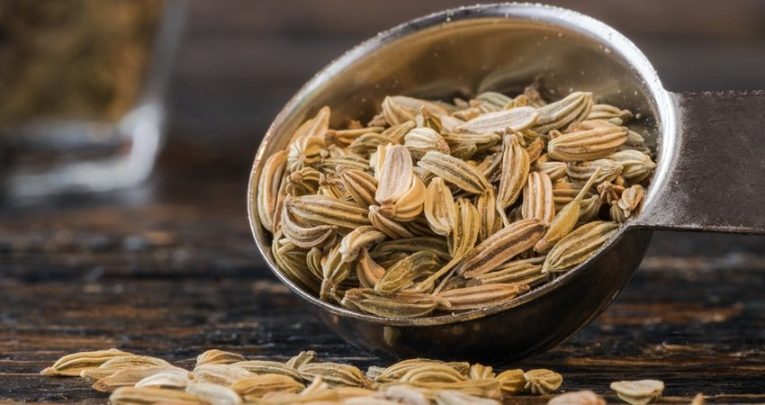 Fennel Seeds Benefits and Side Effects