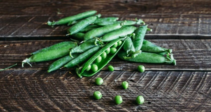Benefits of Green Peas