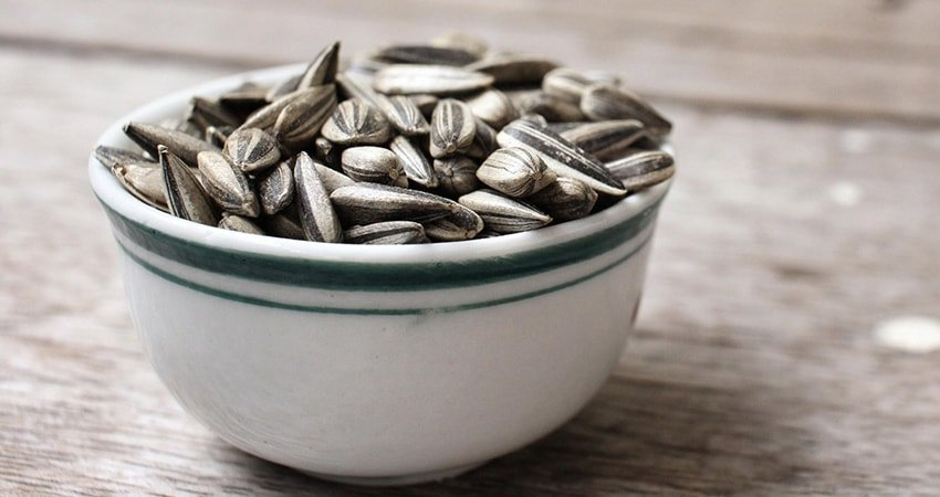 Side Effects of Sunflower Seeds