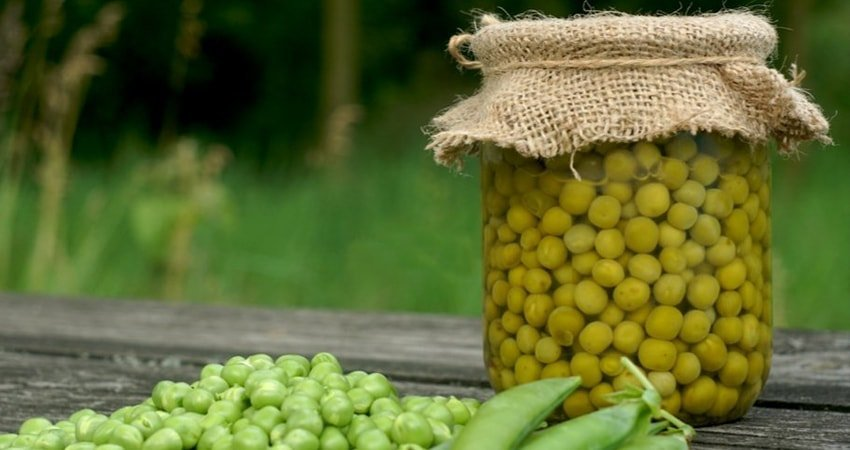 Green Peas: Selection and Storage Tips