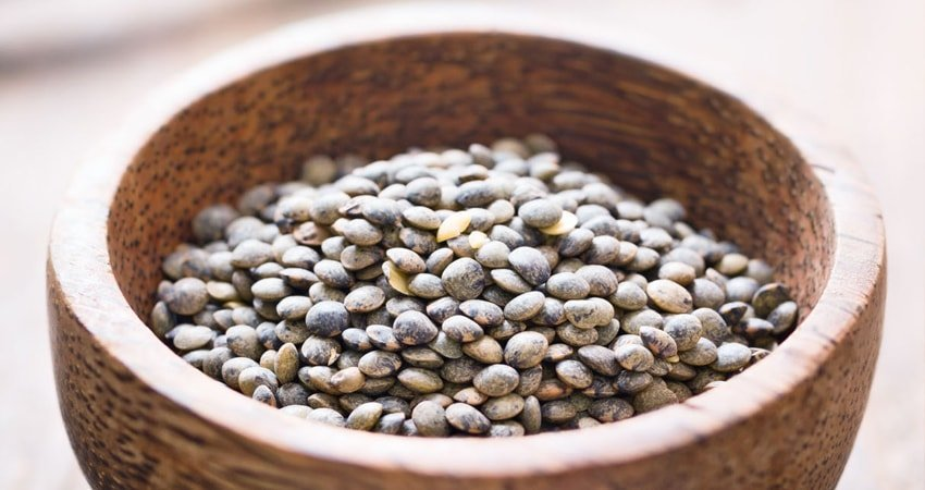 Health Benefits of French Lentils
