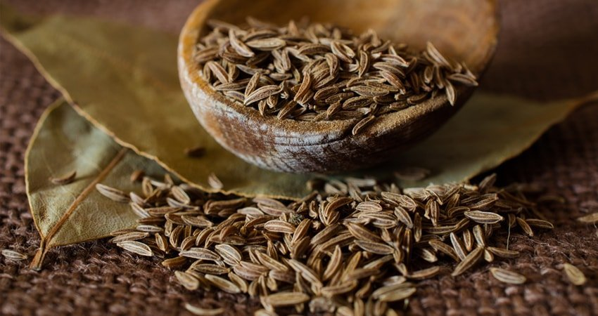 Nutritional Value of Cumin Seeds
