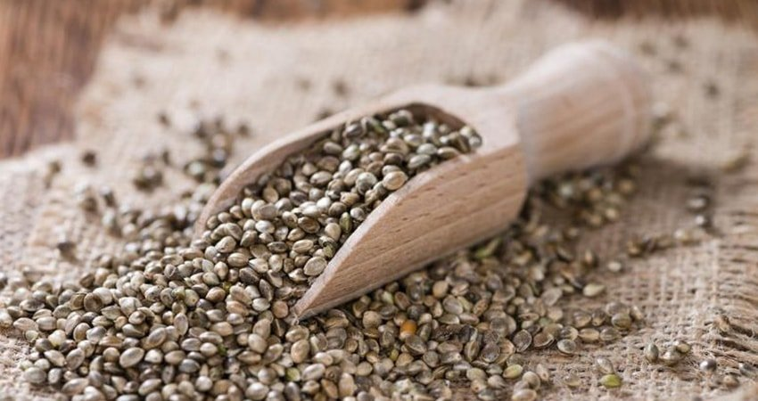 Hemp seeds as a great way to have beautiful muscles.