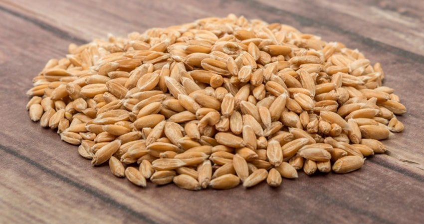 Numerous Ways to Enjoy the Rich Taste of Wheat Berries