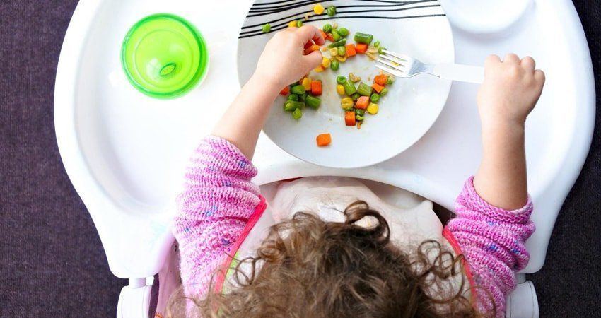 Vegetarian Diet for Infants