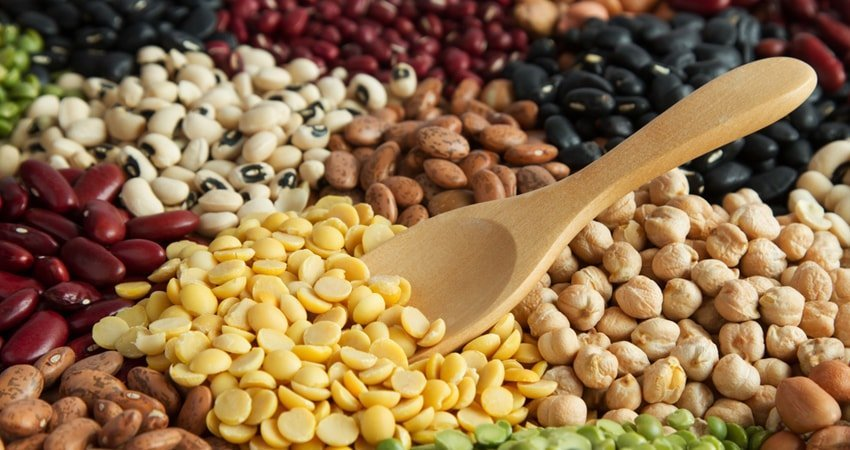 Allergy to Legumes: What Exactly Are You Allergic To