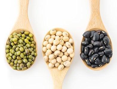15 Vegan Diet Foods to Eat for Normalizing Metabolism