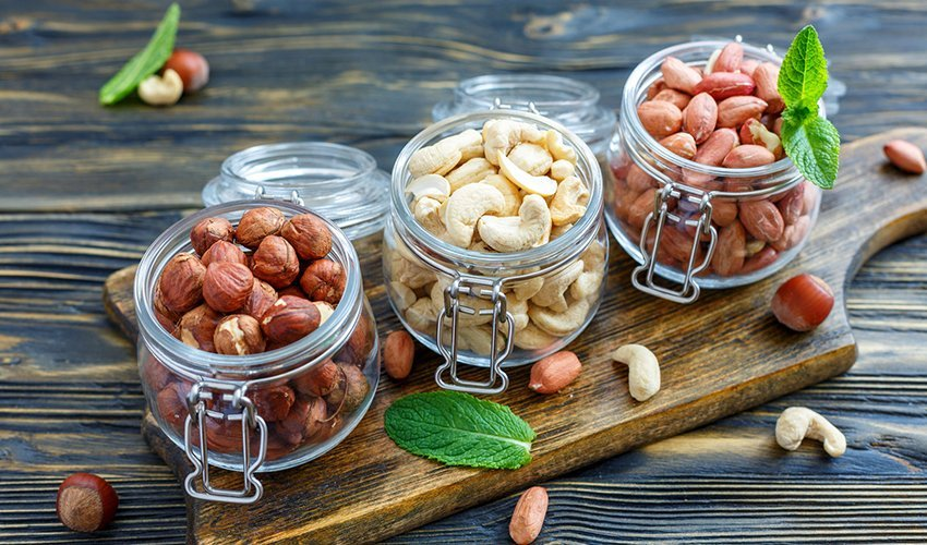 What Are the Safe Nuts for Dogs to Eat