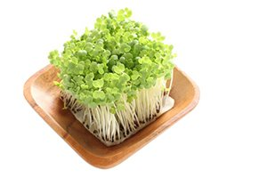 Broccoli Sprouts: Uses, Side Effects, Mechanism of Action
