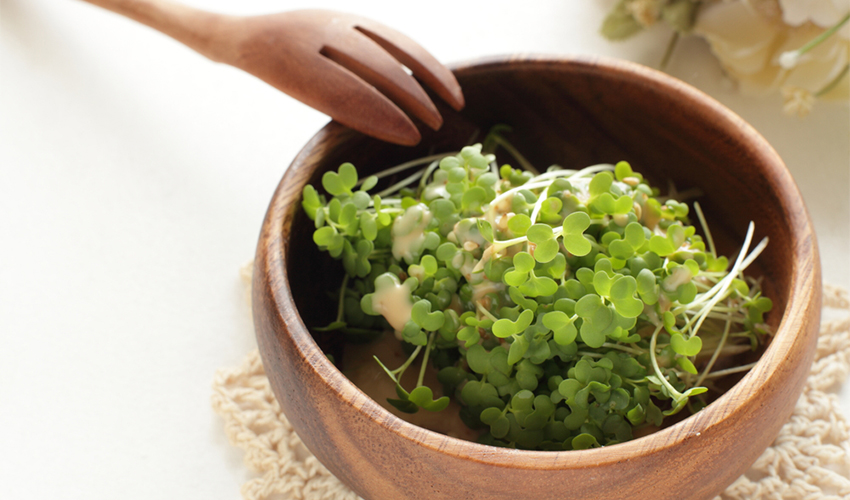 Broccoli sprouts on bowl