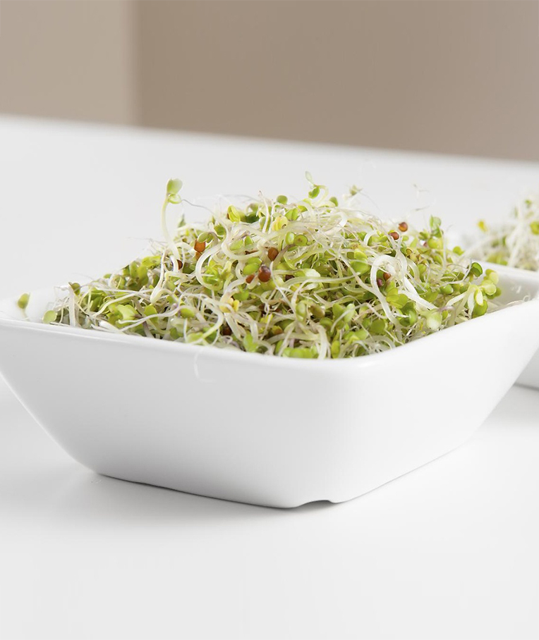 Why You Should Eat Broccoli Sprouts