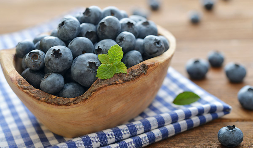 Effect of blueberries