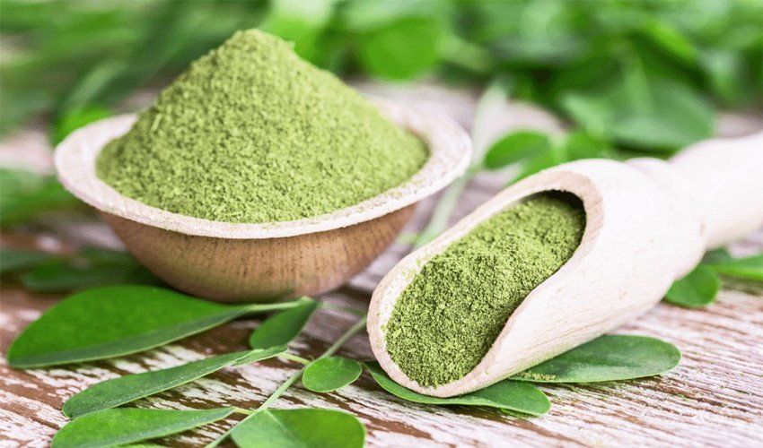 Moringa Powder health benefits