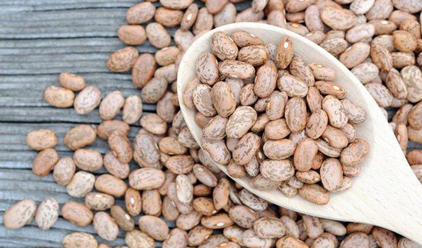 Pinto Beans Amazing Health Benefits