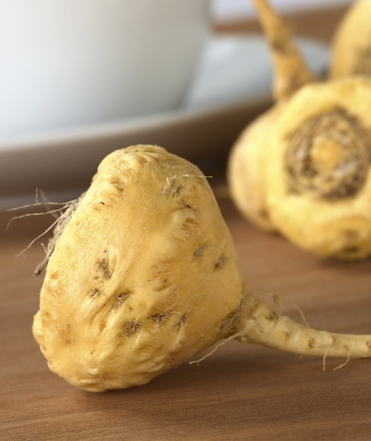 What is the Difference Between Yellow, Black, and Red Maca Root