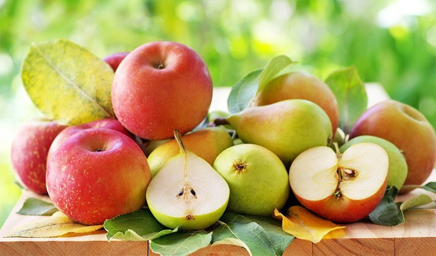 Pears Vs. Apples - Vitamins and Minerals