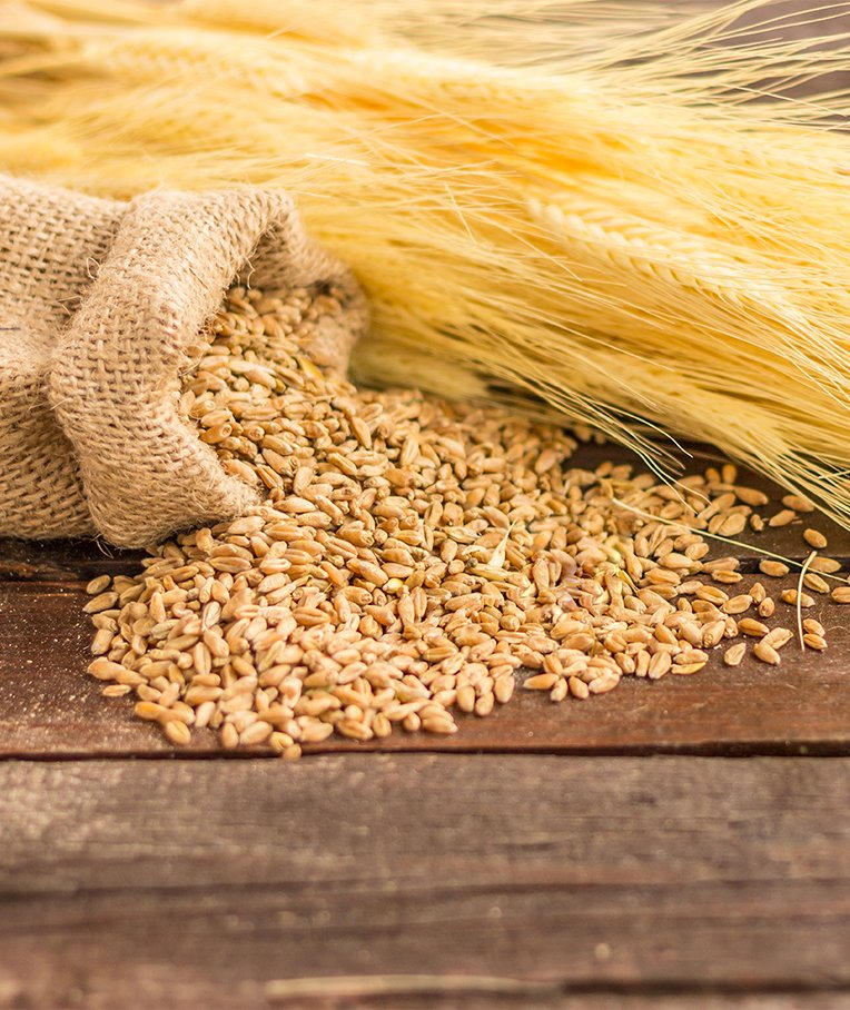 Nutritional Comparison: Farro vs Barley