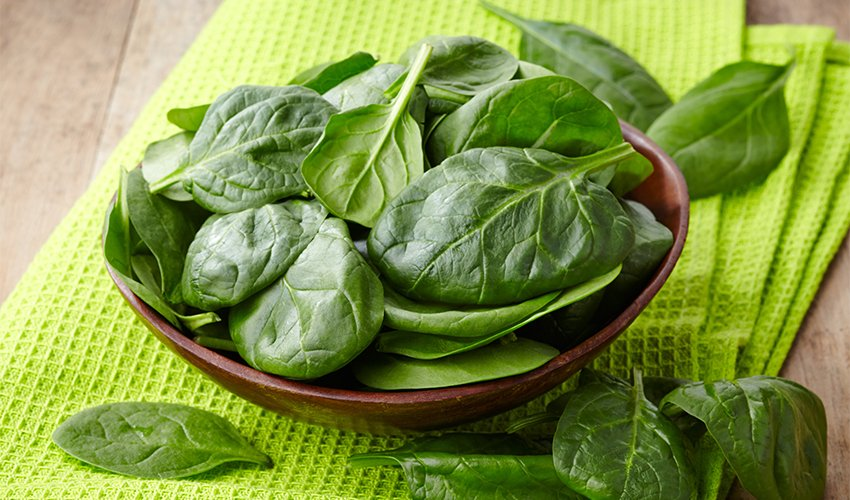 Spinach Vs. Kale: Which Is Healthier?