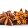 Anise Seeds: An Aromatic Medicine or Mere Spice?