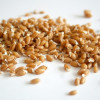Wheat Sprouts: Health Benefits and How to Grow Them