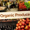 3 Tips on How to Cut the Cost of Organic Food for Vegans