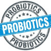 Sources of Vegan Probiotics and Why You Should Care About This