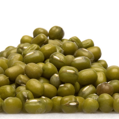 Mung Bean Sprouts 480 Tr
