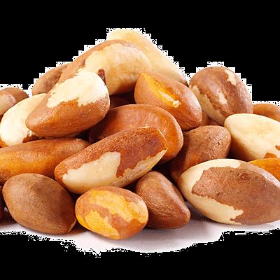 Brazil-Nuts-Transp-400