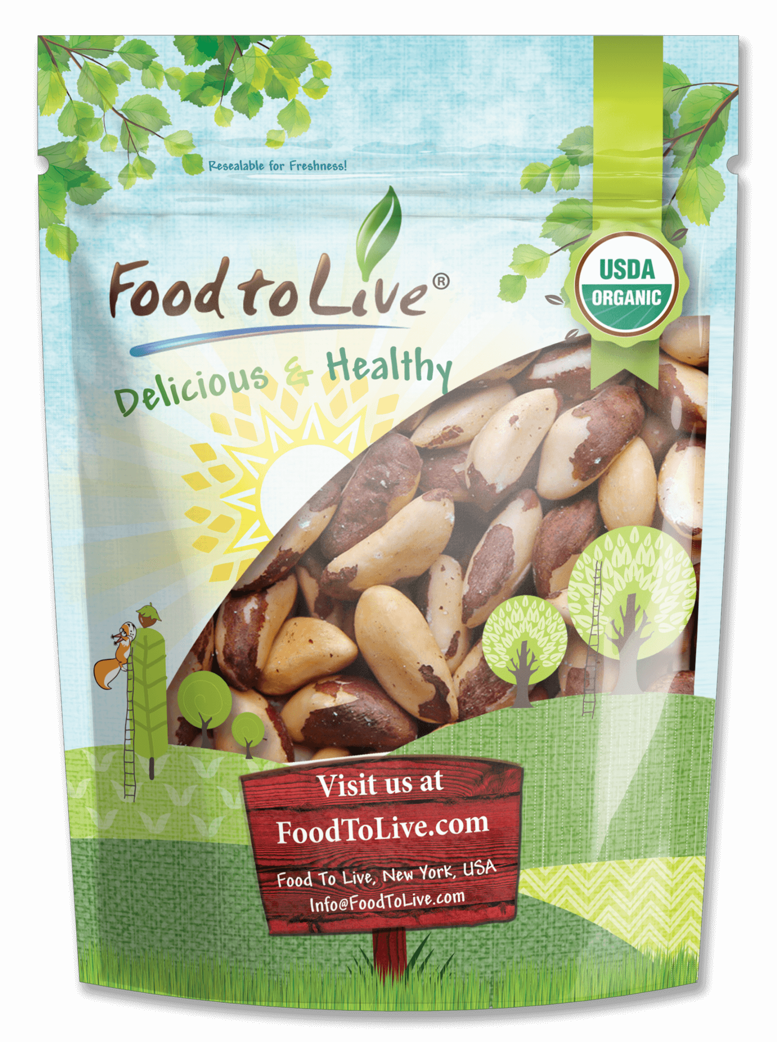 organic brazil nuts in small bag