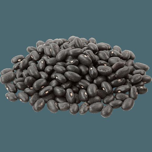 Black turtle bean