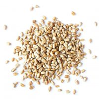 Organic Wheat Berries