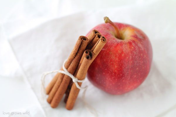 An apple and cinnamon on a white table