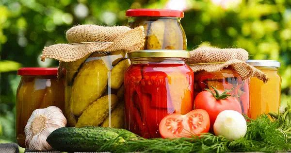 several examples of fermented foods
