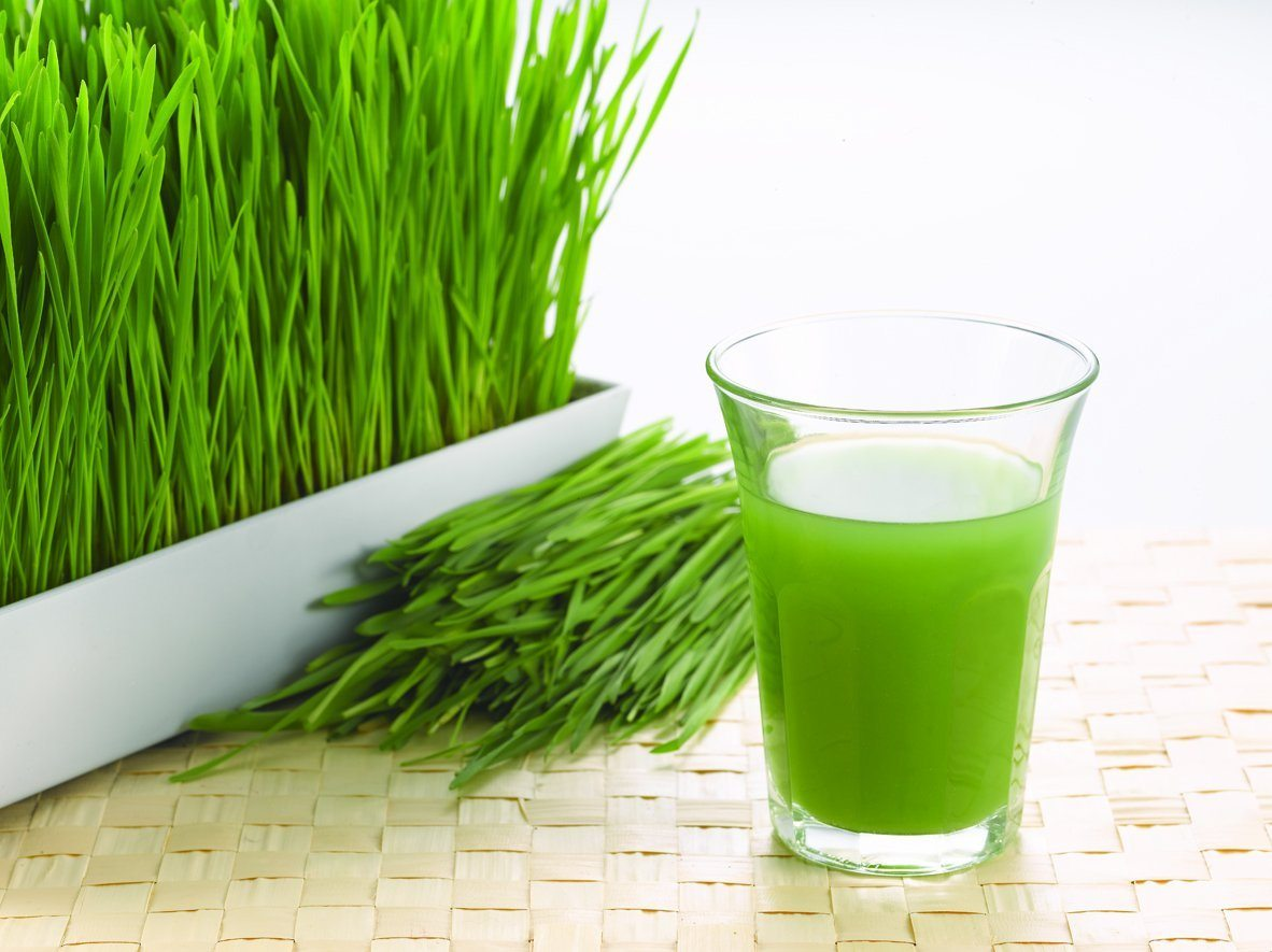 Wheatgrass and a glass of juice