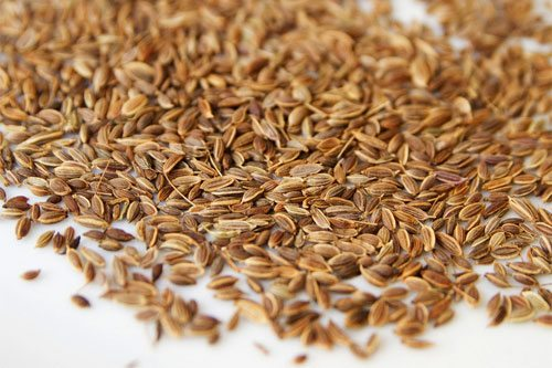 Dill seeds on a white table