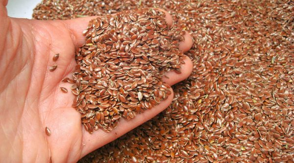 Flax seeds in man's hand