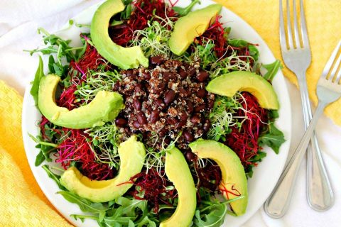 Clover & Red Beet Sprout Salad with Avocado Black Beans & Quinoa