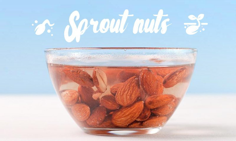 Sprout Nuts