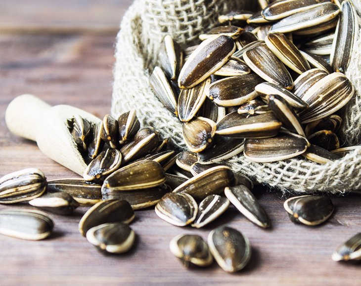 Organic Sunflower Seeds in Shell