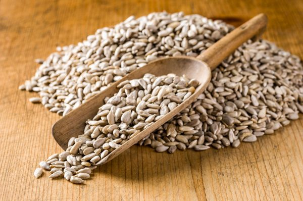raw sprouted sunflower seeds